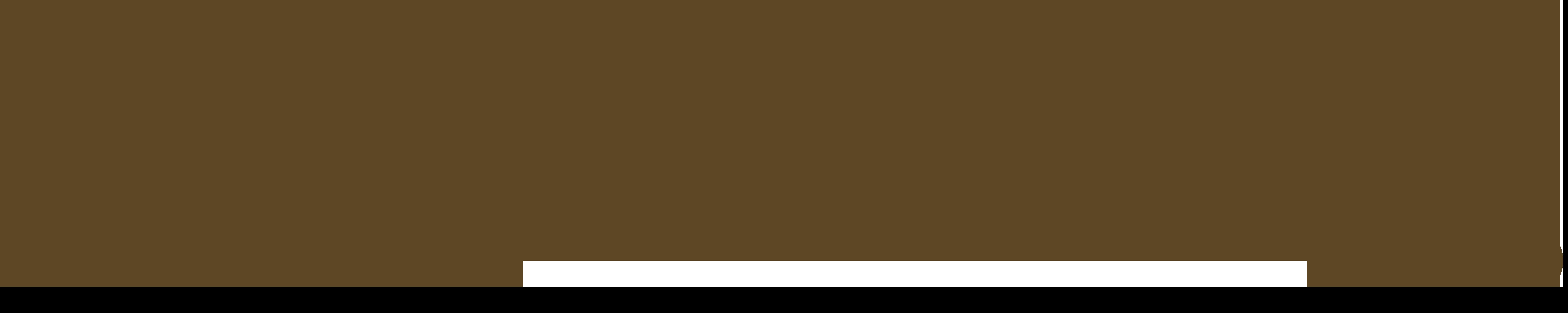 DiscipleLife 2020
